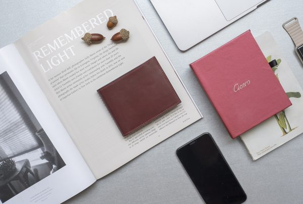 Outstanding features of Cicero wallet